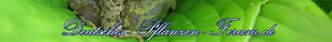 Deutsches-Pflanzen-Forum.de